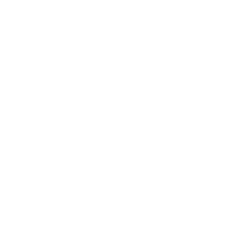 image of instagram icon