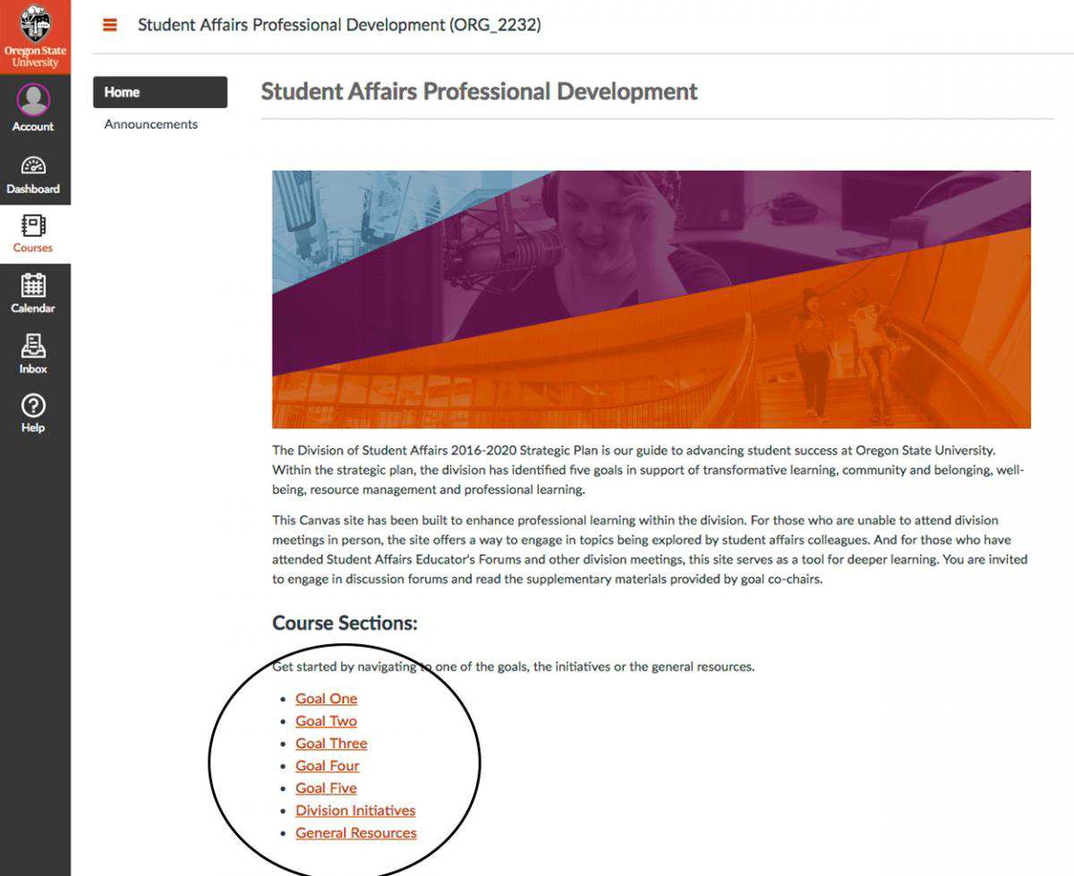 screenshot of view once user has accessed the student affairs professional development Canvas course